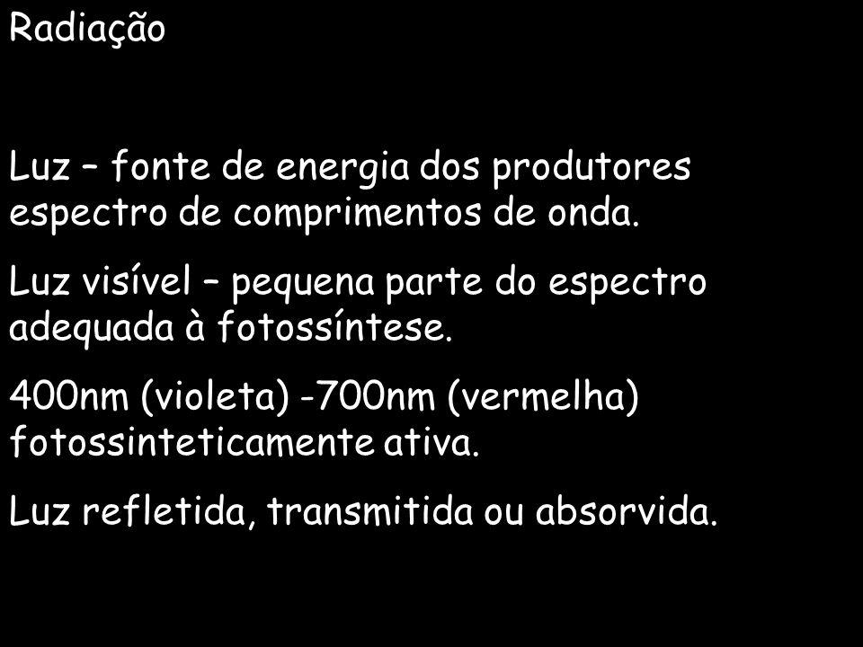 Radiação Luz – fonte de energia dos produtores espectro de comprimentos de onda. Luz visível – pequena parte do espectro adequada à fotossíntese.