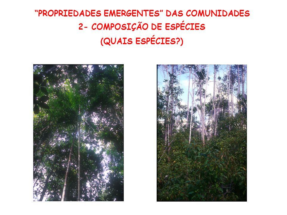 PROPRIEDADES EMERGENTES DAS COMUNIDADES
