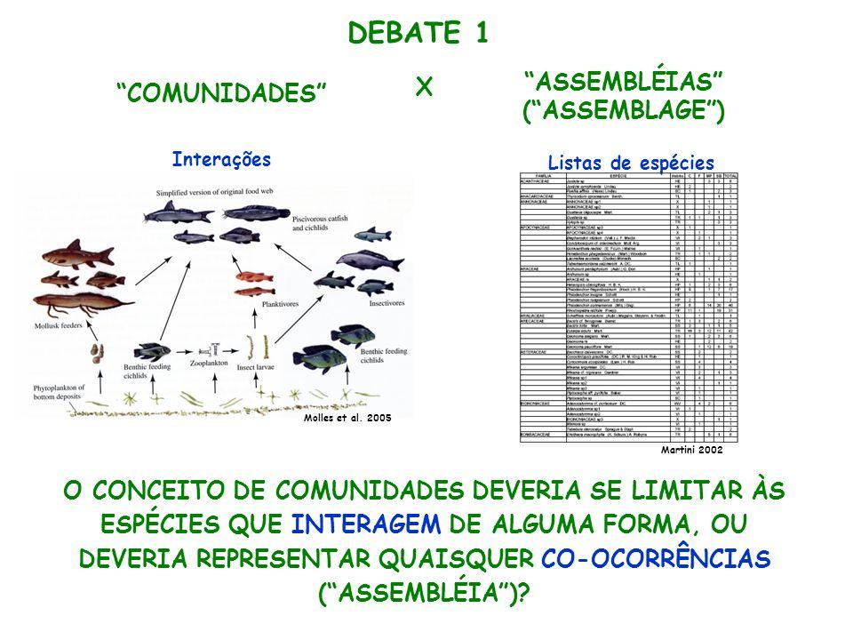 DEBATE 1 ASSEMBLÉIAS X COMUNIDADES ( ASSEMBLAGE )