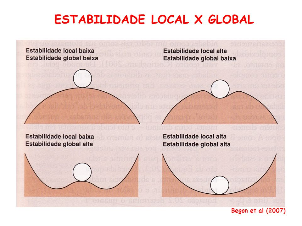 ESTABILIDADE LOCAL X GLOBAL