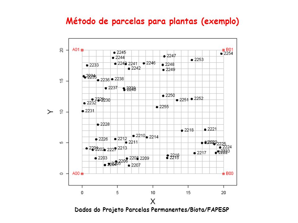 Método de parcelas para plantas (exemplo)