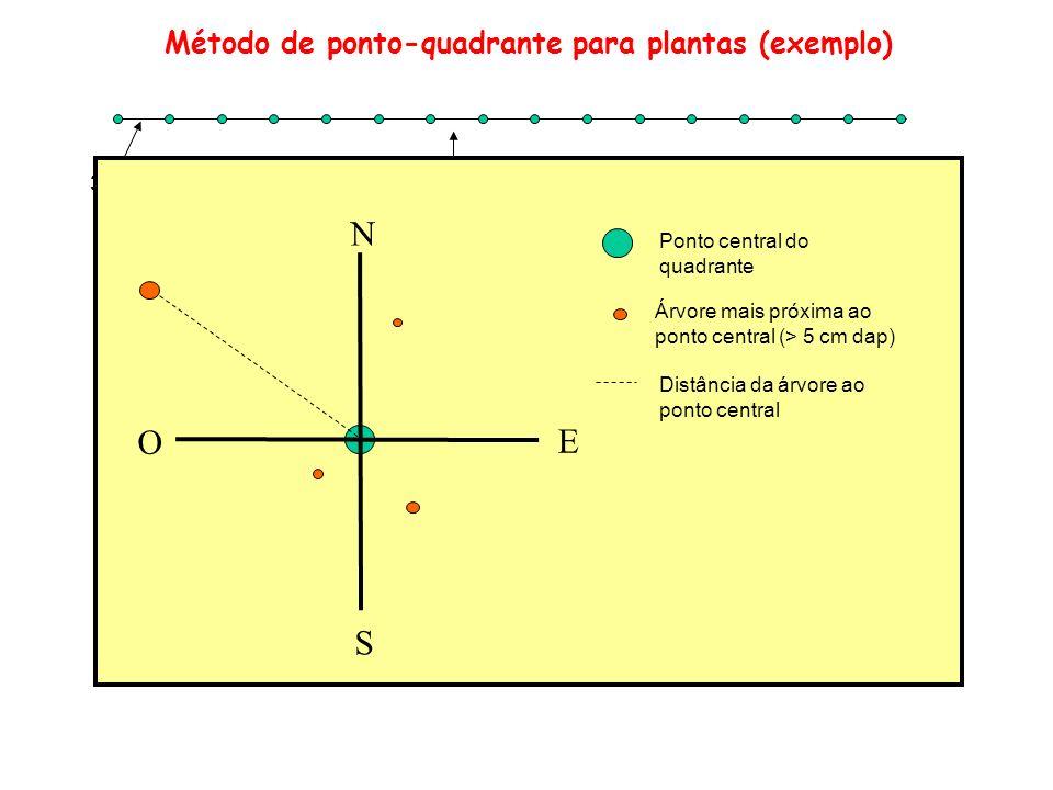 Método de ponto-quadrante para plantas (exemplo)