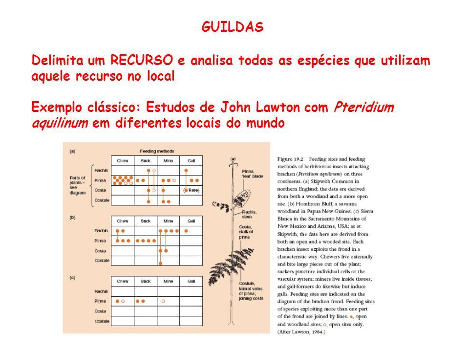 GUILDAS Delimita um RECURSO e analisa todas as espécies que utilizam aquele recurso no local.
