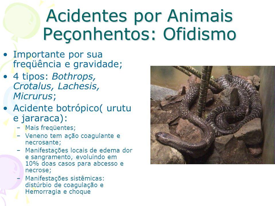 Acidentes por Animais Peçonhentos: Ofidismo