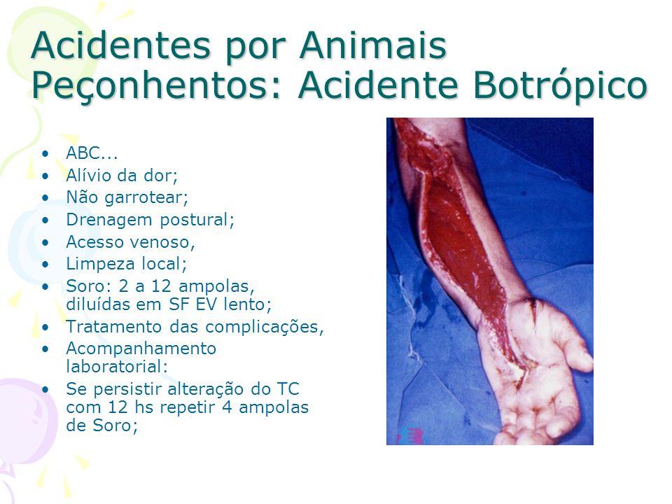 Acidentes por Animais Peçonhentos: Acidente Botrópico