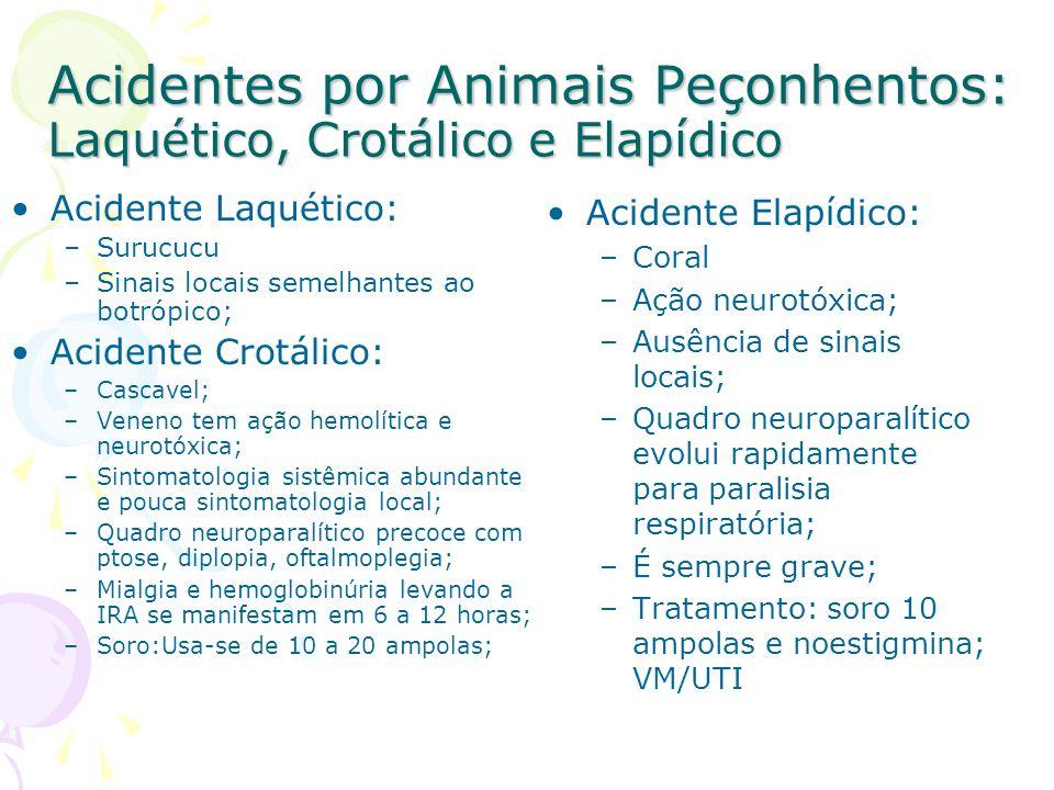 Acidentes por Animais Peçonhentos: Laquético, Crotálico e Elapídico