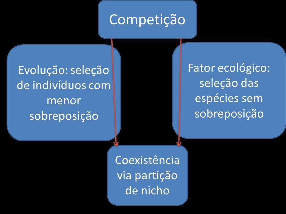 Competição Fator ecológico: seleção das espécies sem sobreposição