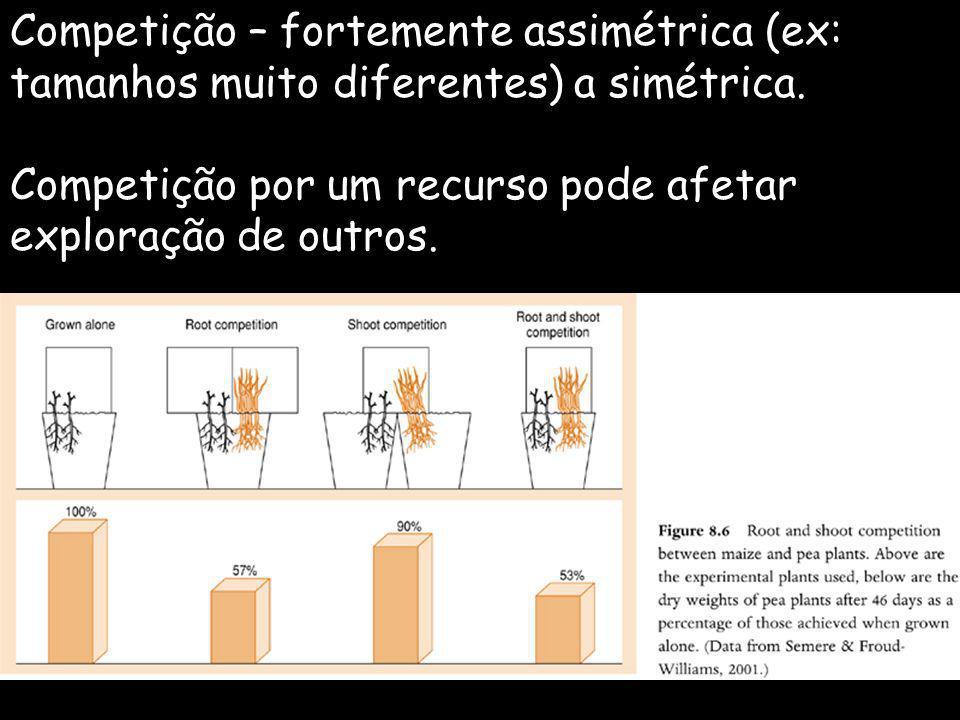 Competição – fortemente assimétrica (ex: tamanhos muito diferentes) a simétrica.