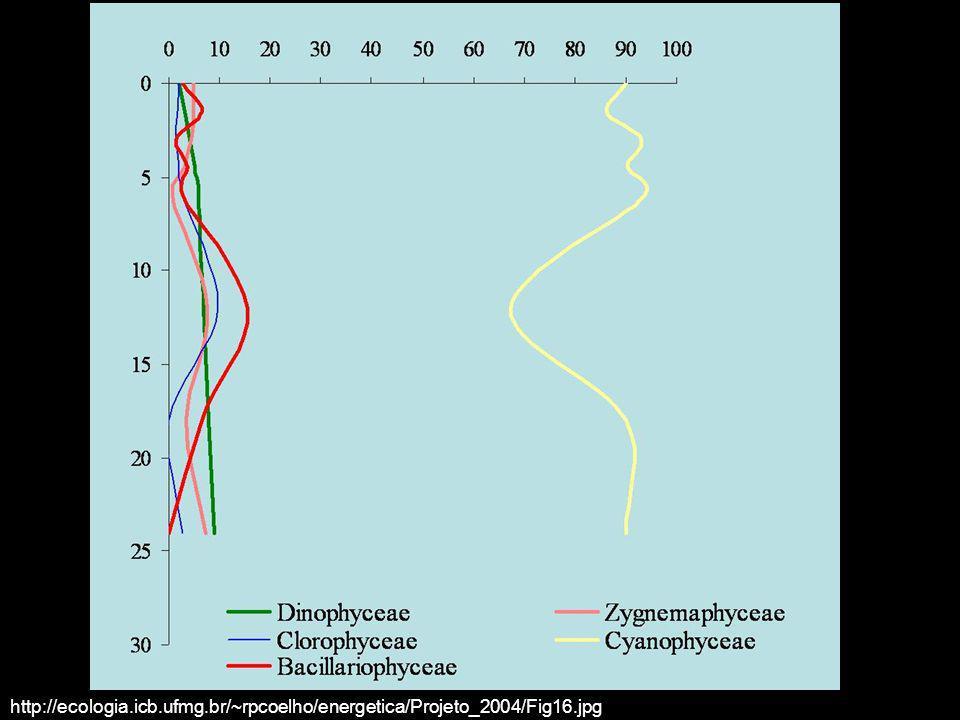 http://ecologia. icb. ufmg. br/~rpcoelho/energetica/Projeto_2004/Fig16