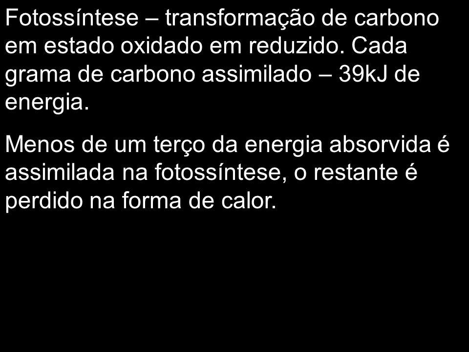 Fotossíntese – transformação de carbono em estado oxidado em reduzido