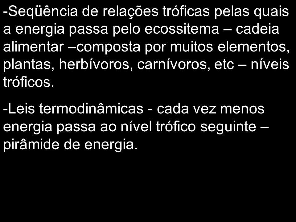 Seqüência de relações tróficas pelas quais a energia passa pelo ecossitema – cadeia alimentar –composta por muitos elementos, plantas, herbívoros, carnívoros, etc – níveis tróficos.