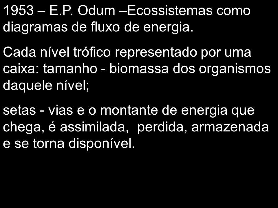 1953 – E.P. Odum –Ecossistemas como diagramas de fluxo de energia.