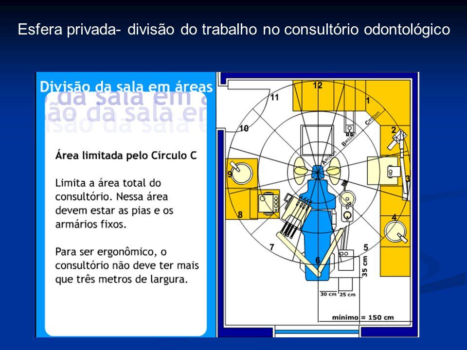 Esfera privada- divisão do trabalho no consultório odontológico