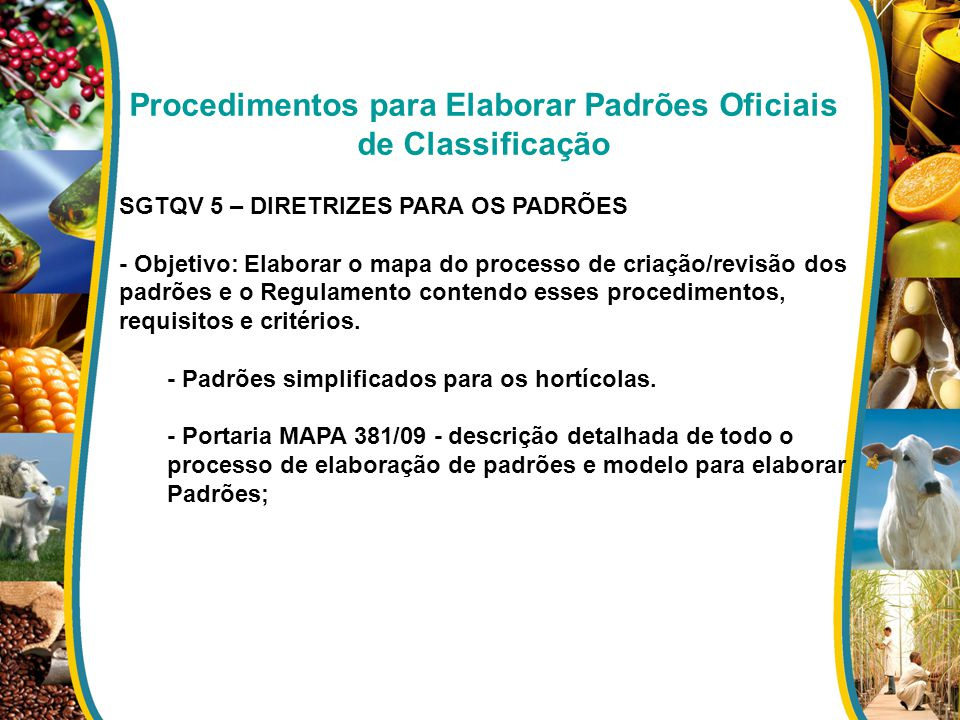 Procedimentos para Elaborar Padrões Oficiais de Classificação