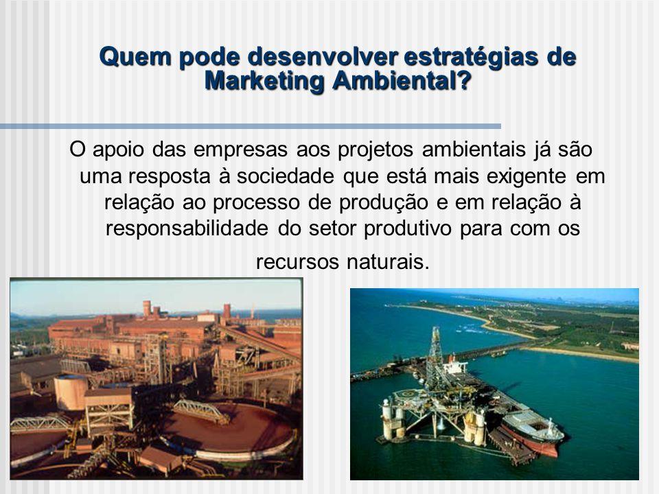Quem pode desenvolver estratégias de Marketing Ambiental