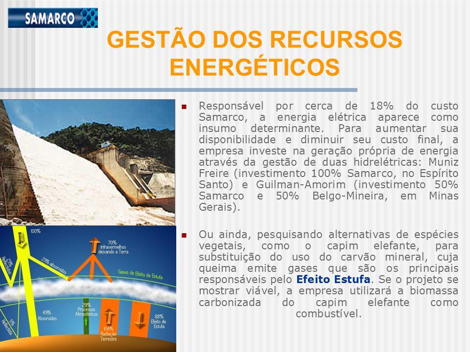 GESTÃO DOS RECURSOS ENERGÉTICOS
