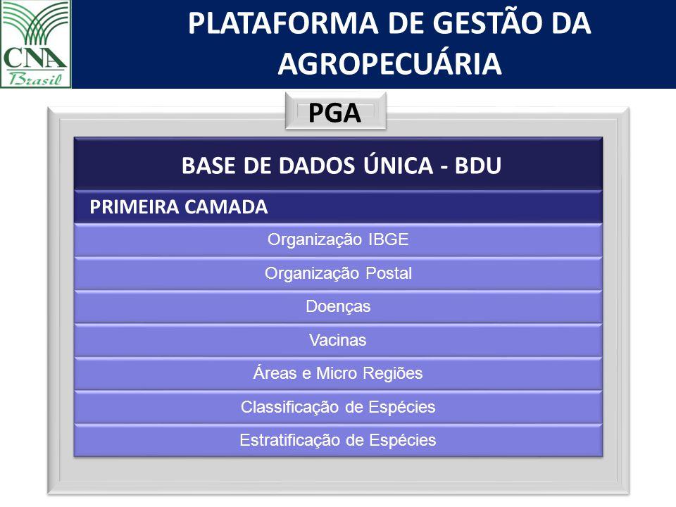 PGA BASE DE DADOS ÚNICA - BDU PRIMEIRA CAMADA Organização IBGE