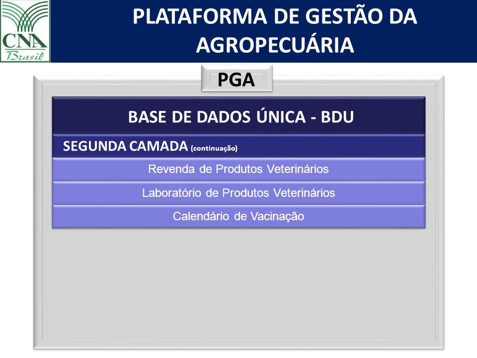 PGA BASE DE DADOS ÚNICA - BDU SEGUNDA CAMADA (continuação)