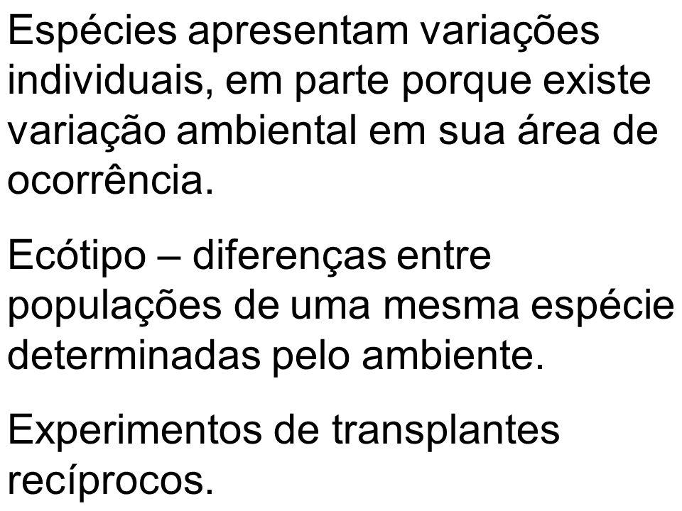 Espécies apresentam variações individuais, em parte porque existe variação ambiental em sua área de ocorrência.