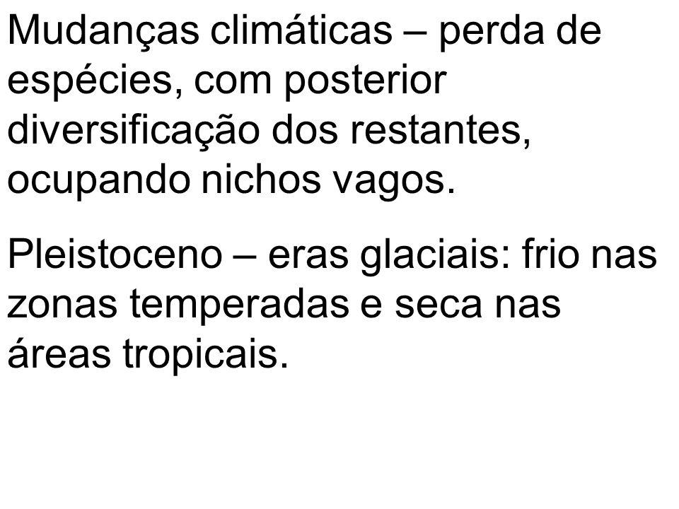 Mudanças climáticas – perda de espécies, com posterior diversificação dos restantes, ocupando nichos vagos.
