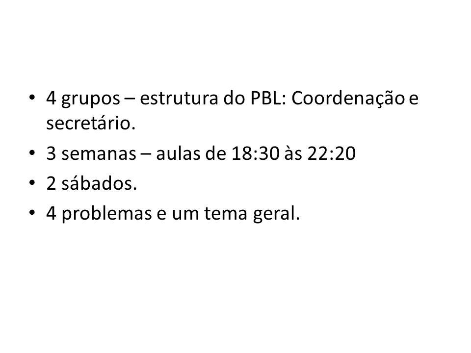 4 grupos – estrutura do PBL: Coordenação e secretário.