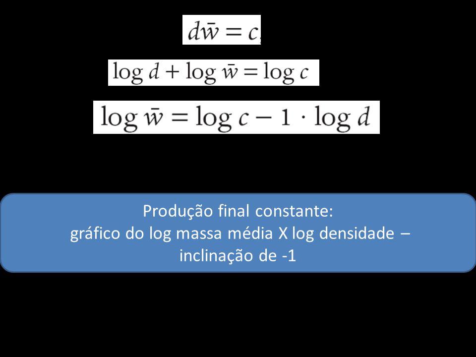 Produção final constante: gráfico do log massa média X log densidade –