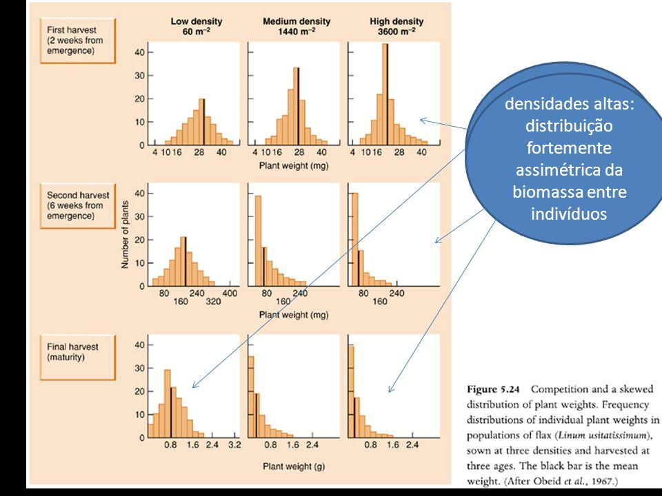 Início e densidades baixas : distribuição simétrica em torno da média