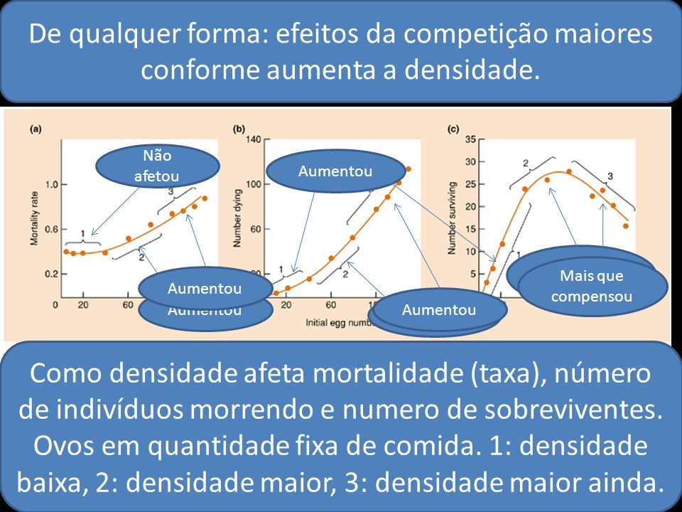 De qualquer forma: efeitos da competição maiores conforme aumenta a densidade.