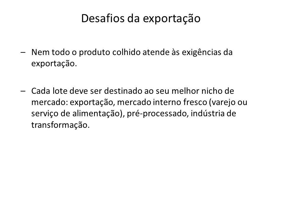 Desafios da exportação
