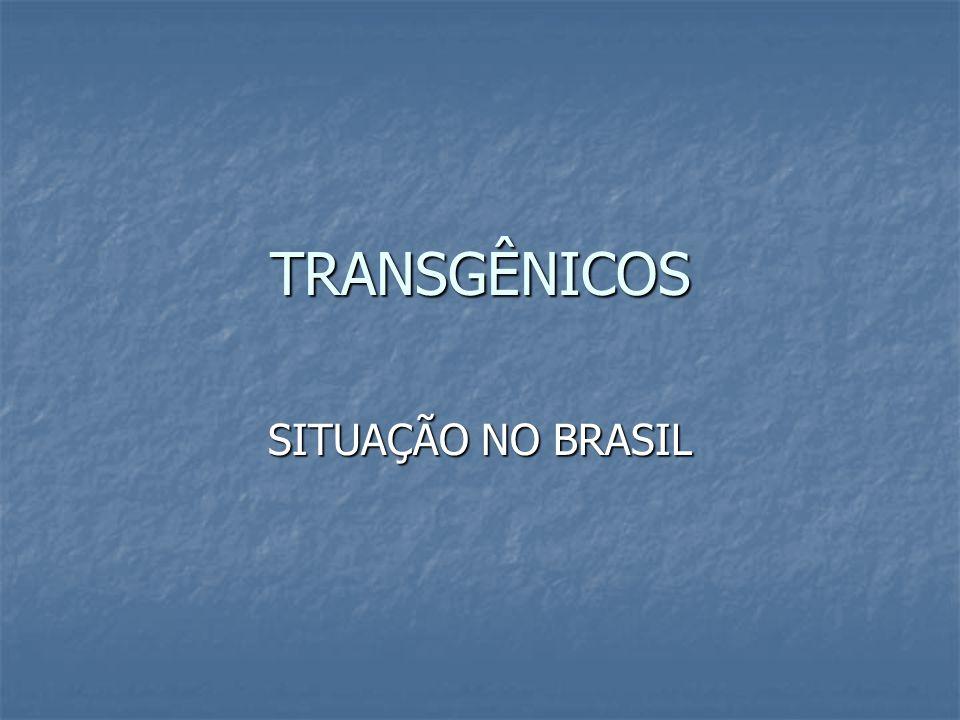 TRANSGÊNICOS SITUAÇÃO NO BRASIL