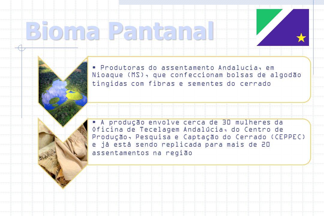 Bioma Pantanal Produtoras do assentamento Andalucia, em Nioaque (MS), que confeccionam bolsas de algodão tingidas com fibras e sementes do cerrado.
