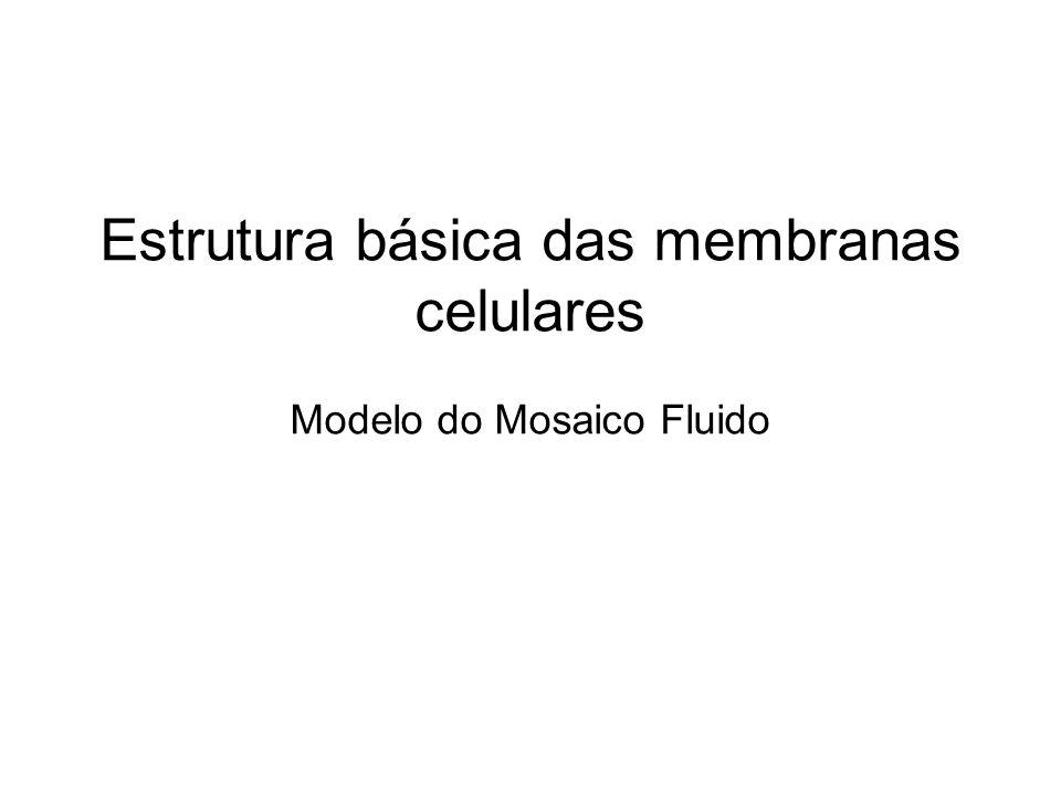 Estrutura básica das membranas celulares Modelo do Mosaico Fluido
