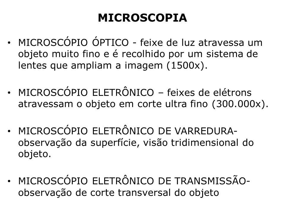 MICROSCOPIA MICROSCÓPIO ÓPTICO - feixe de luz atravessa um objeto muito fino e é recolhido por um sistema de lentes que ampliam a imagem (1500x).
