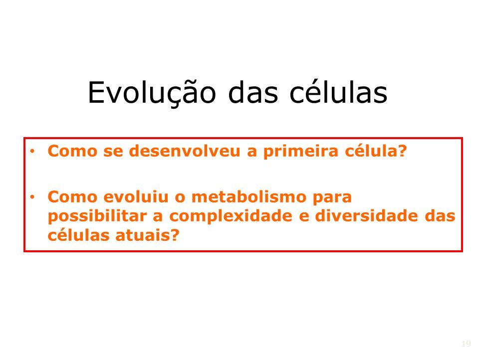 Evolução das células Como se desenvolveu a primeira célula