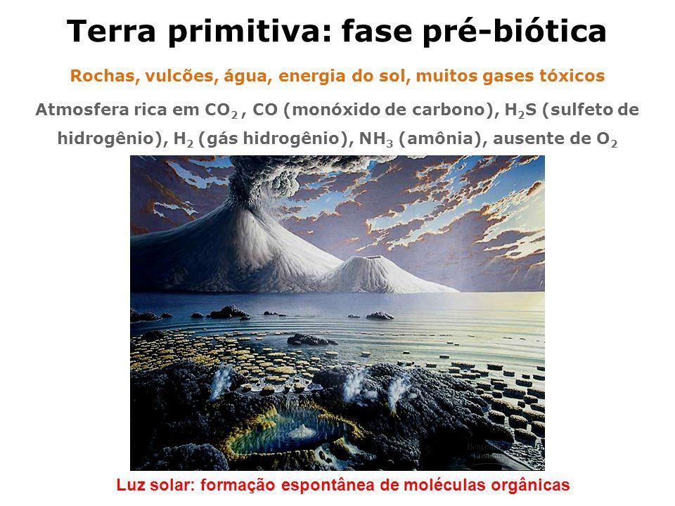 Terra primitiva: fase pré-biótica