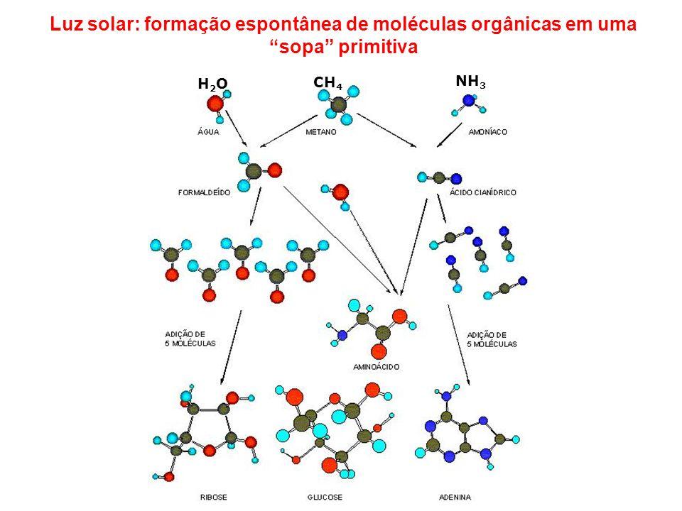 Luz solar: formação espontânea de moléculas orgânicas em uma sopa primitiva
