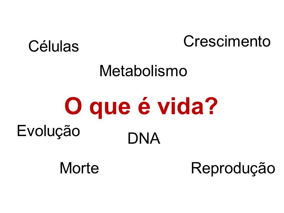 O que é vida Crescimento Células Metabolismo Evolução DNA Morte