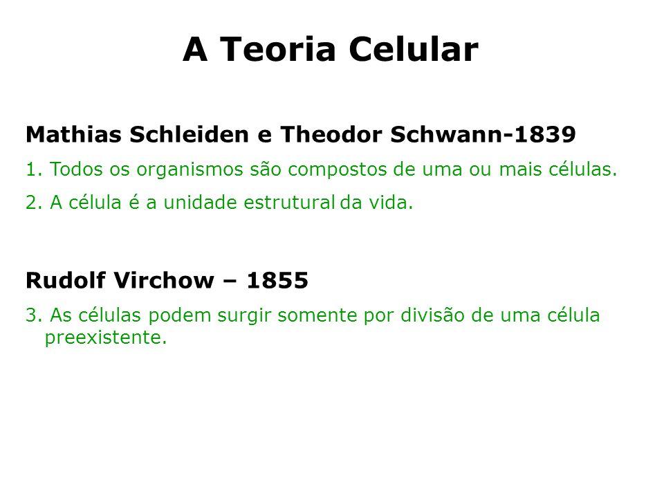 A Teoria Celular Mathias Schleiden e Theodor Schwann-1839