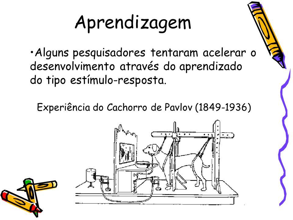 Experiência do Cachorro de Pavlov (1849-1936)