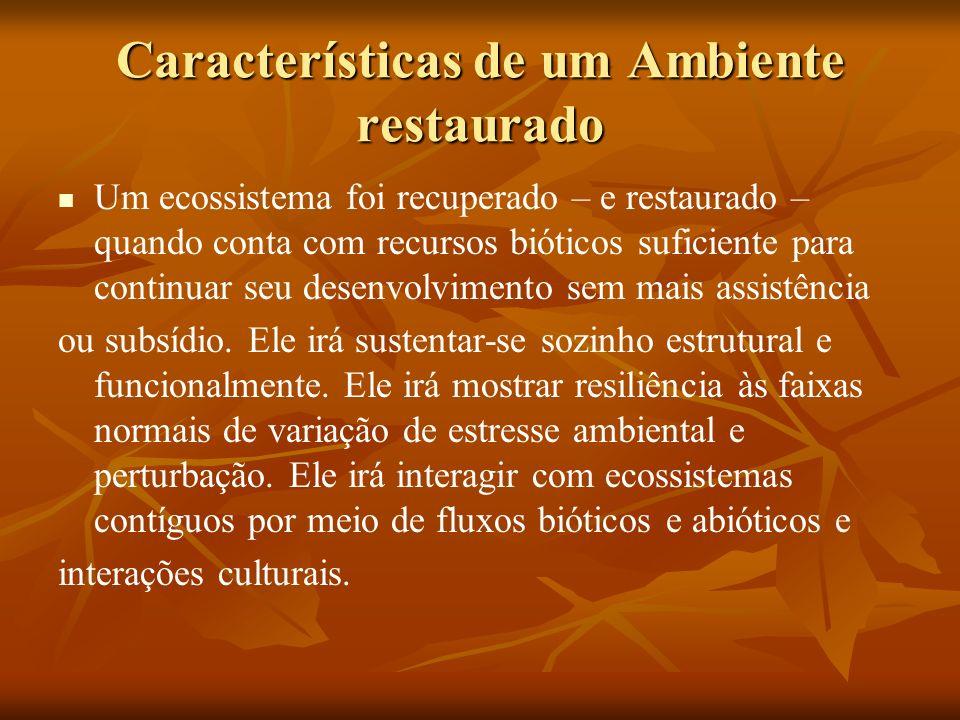 Características de um Ambiente restaurado