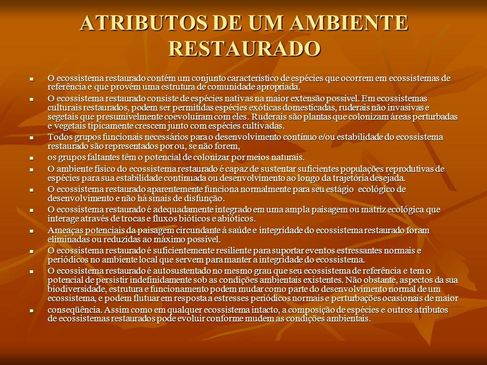 ATRIBUTOS DE UM AMBIENTE RESTAURADO