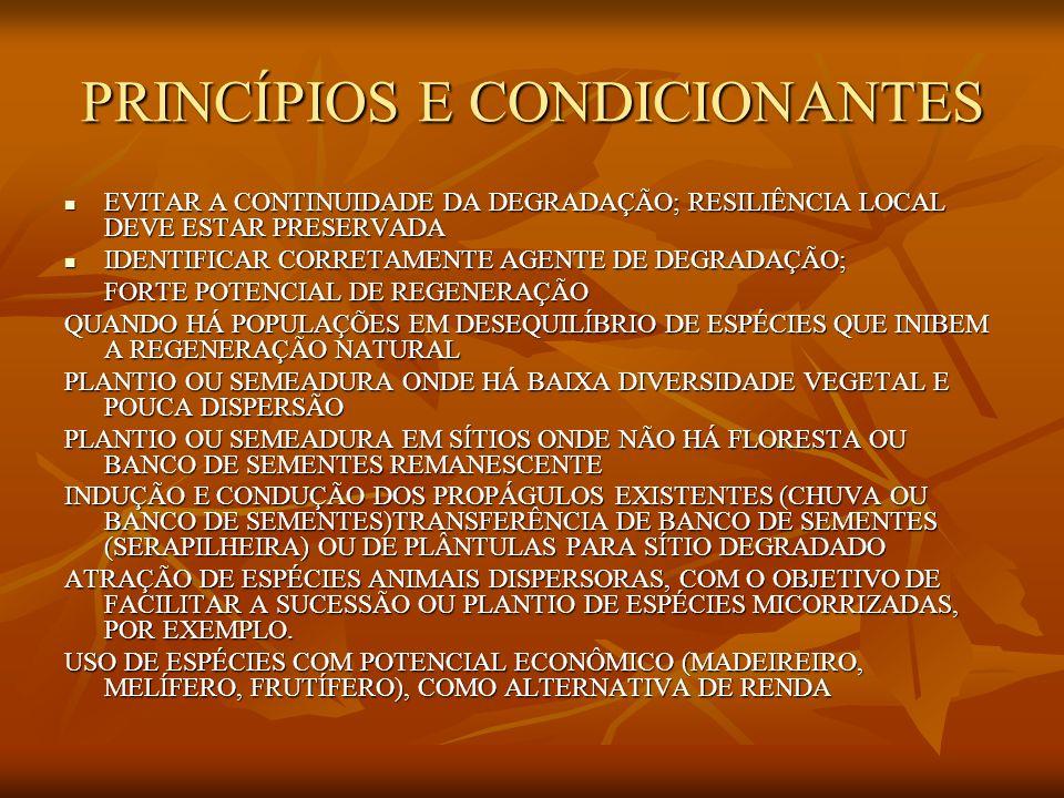 PRINCÍPIOS E CONDICIONANTES