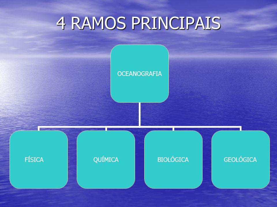 4 RAMOS PRINCIPAIS