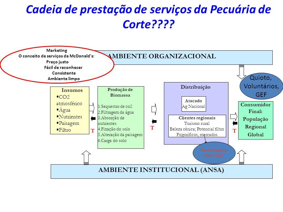 Cadeia de prestação de serviços da Pecuária de Corte