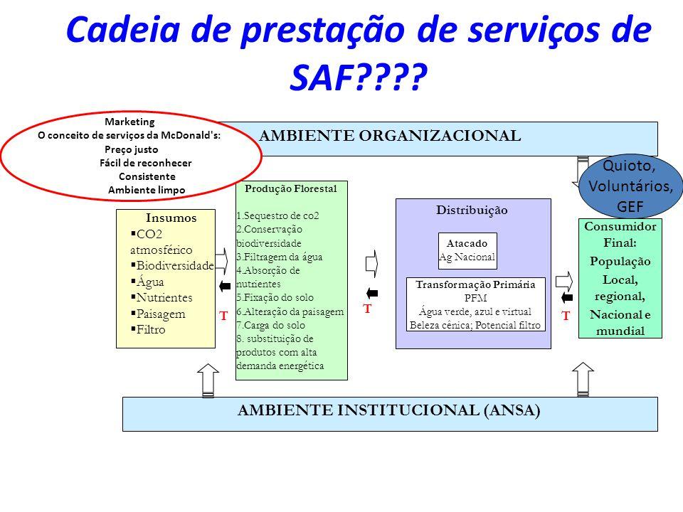 Cadeia de prestação de serviços de SAF