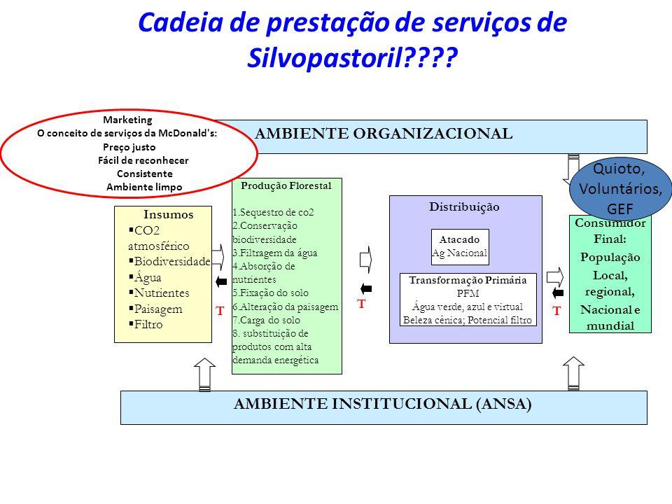 Cadeia de prestação de serviços de Silvopastoril