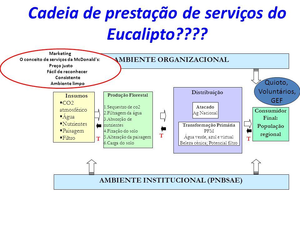Cadeia de prestação de serviços do Eucalipto