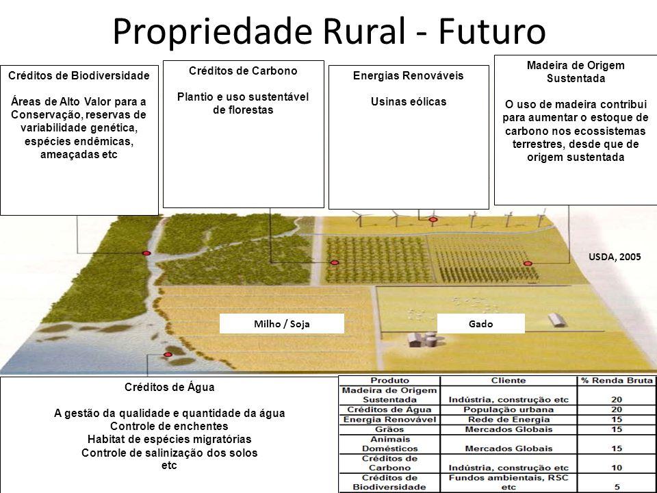 Propriedade Rural - Futuro