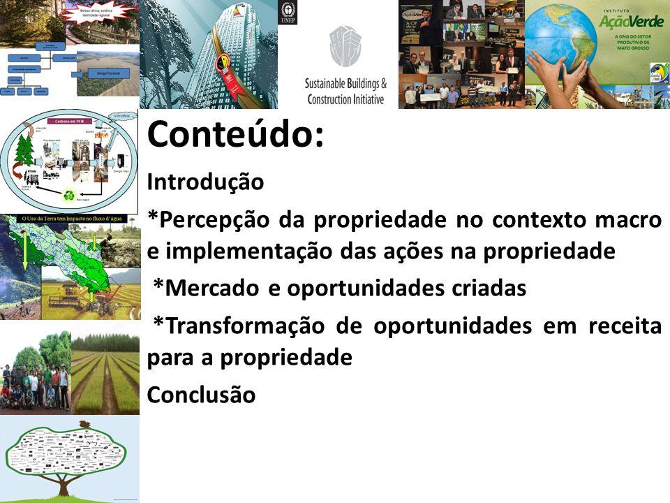 Conteúdo: Introdução. *Percepção da propriedade no contexto macro e implementação das ações na propriedade.