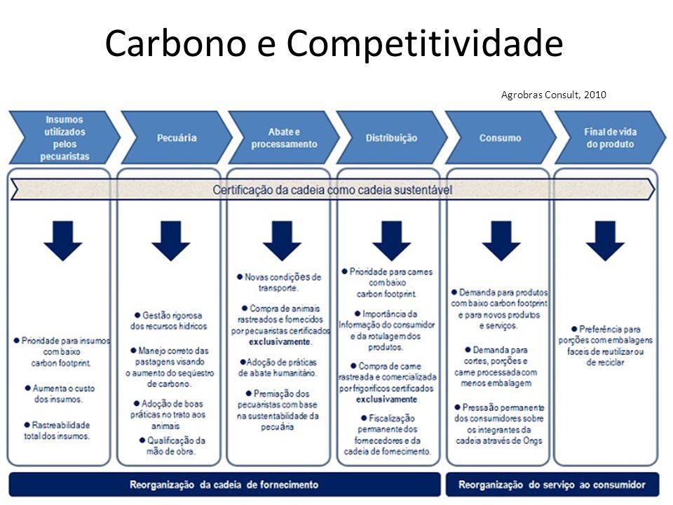 Carbono e Competitividade